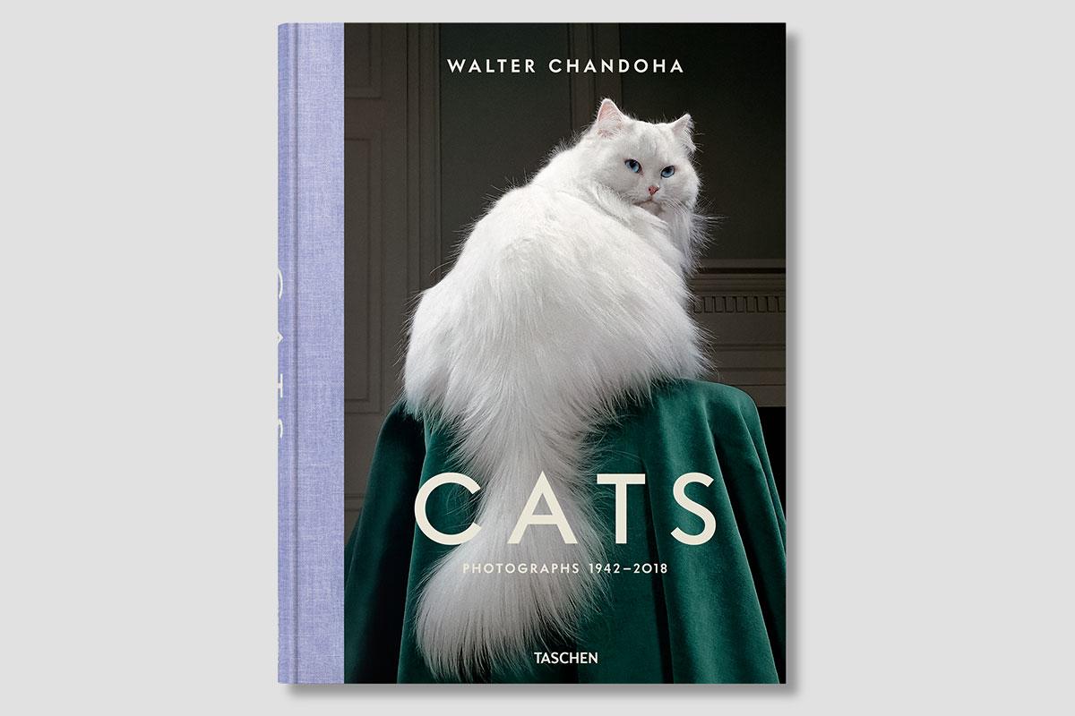 Walter Chandoha. Cats.